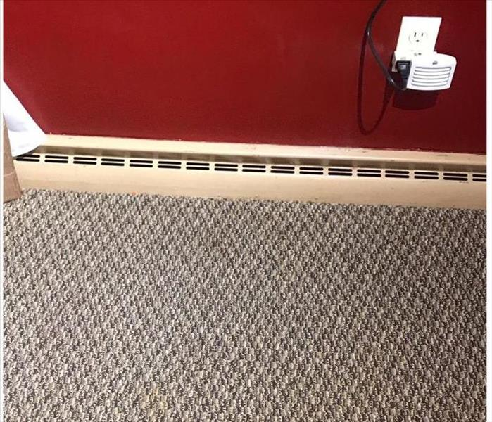 carpet with stain gone, red wall in background