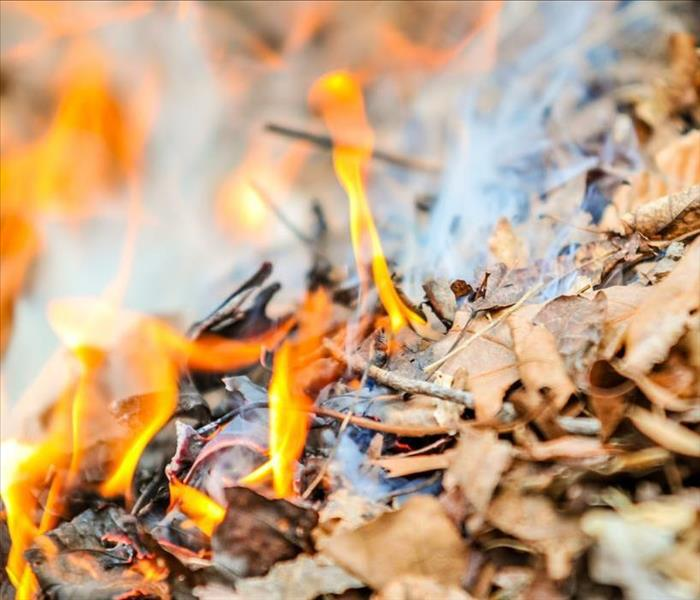 image of leaves being burnt